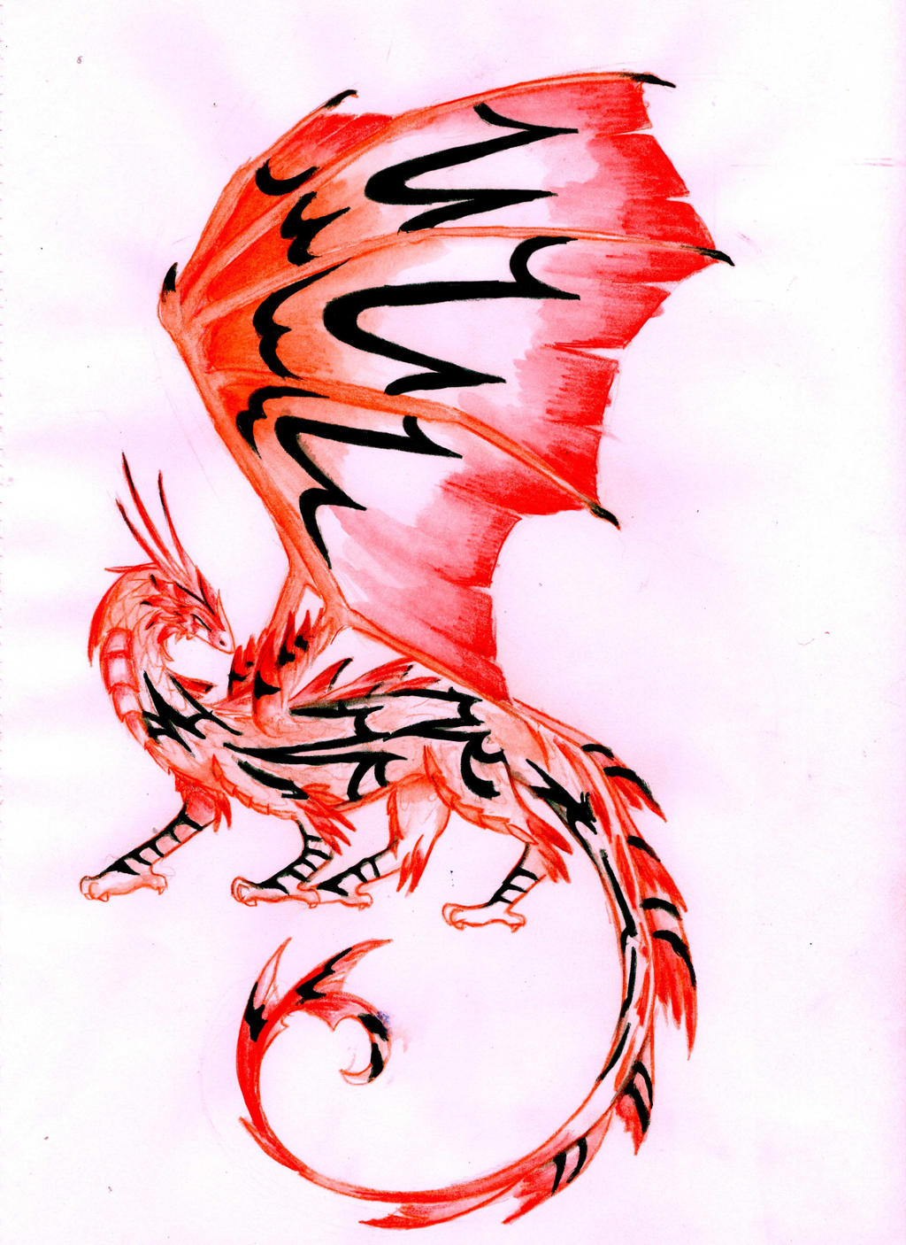 Blackstripe Firewing Dragon by BlazeTheConqueror