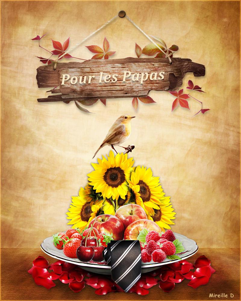 Pour les Papas by MireilleD