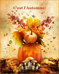Automne by MireilleD