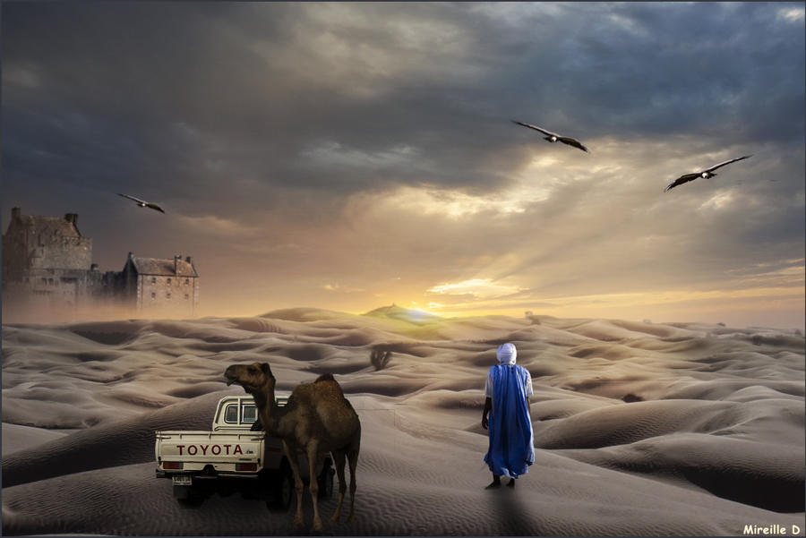 Desert Sunset by MireilleD