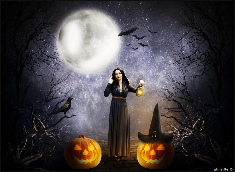 Foret Halloween