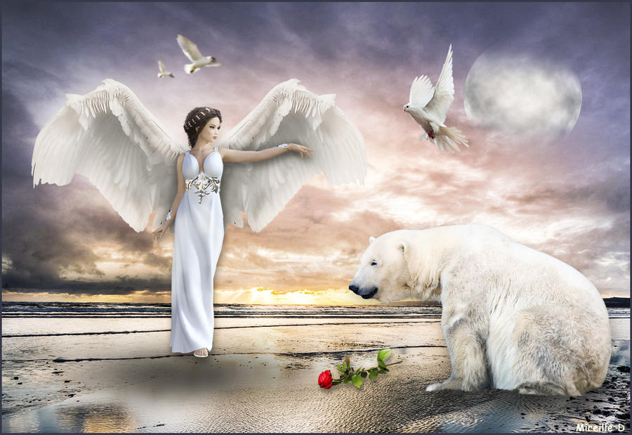 Ange et Ours