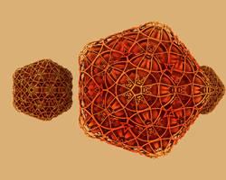 polyhedra polyhydra