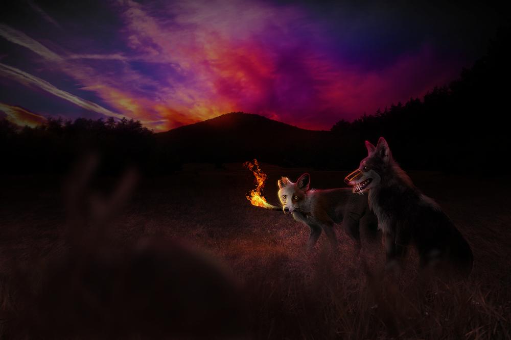 Dusk and Fire by chertan-koraki