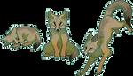 Pixel Fox - Bengal