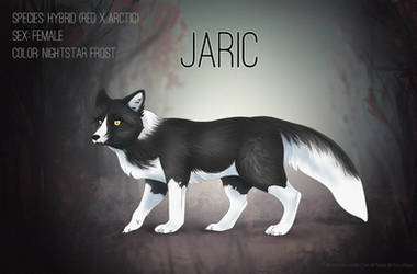 [Fox Village] Jaric