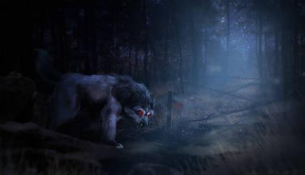 Shady Forest and a Doggo