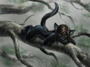 Climbing Kitten