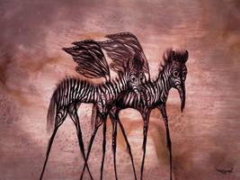 Zebra-Butterflies