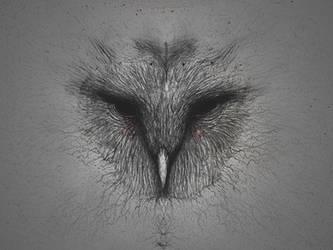 OWL by RuslanKadiev