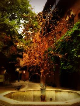 Borgo Medievale III_pomegranate fountain