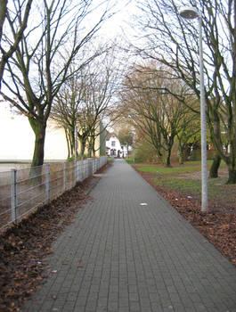 The Autumn Lane
