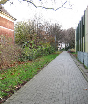 Long Light Lane