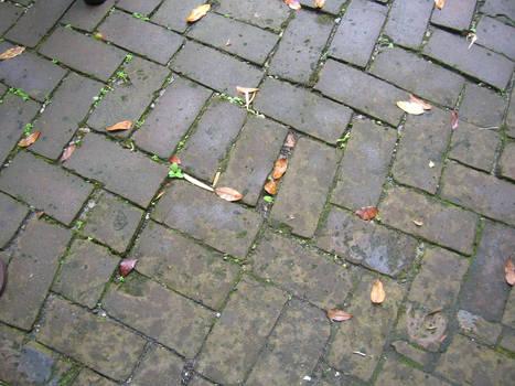 ground texture 002