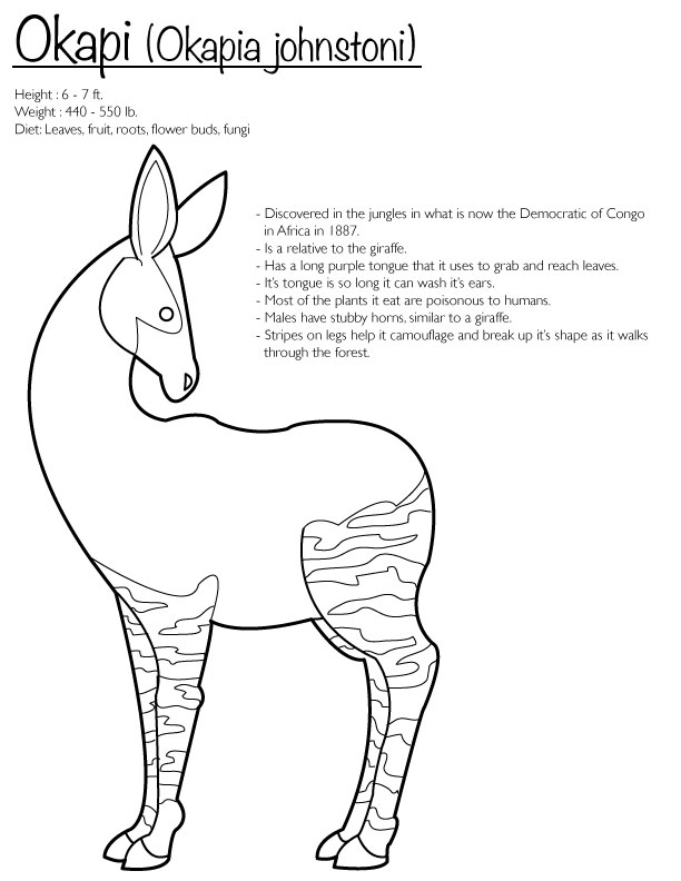 Okapi coloring page by finwitch on deviantart for Okapi coloring page