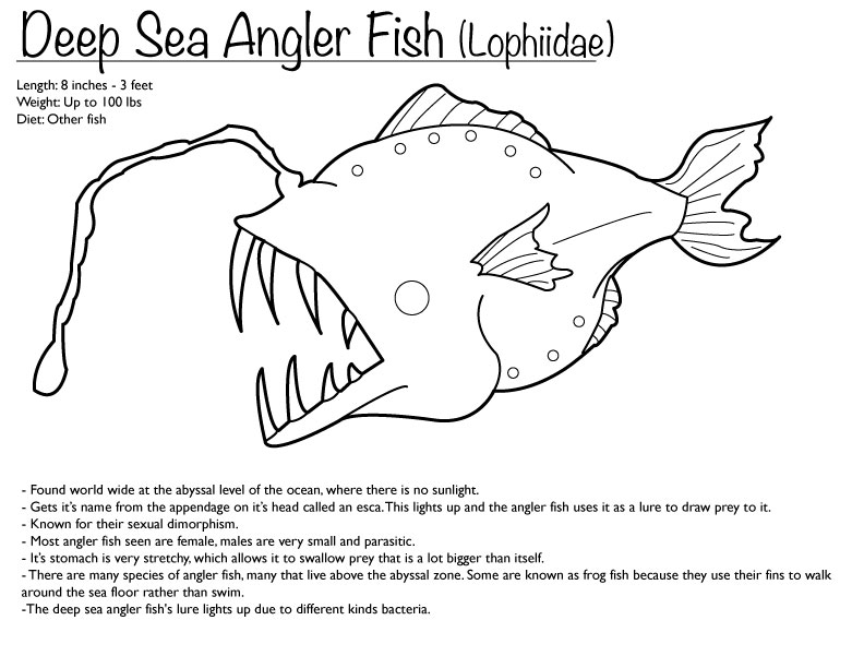 Deep Sea Angler Fish Coloring Page