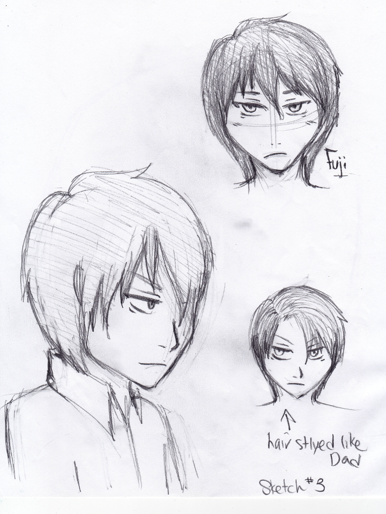 Fuji sketches by Zerolr-RM