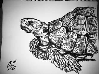 Inktober 2016 Day 23- Slow by LadyWitchfox
