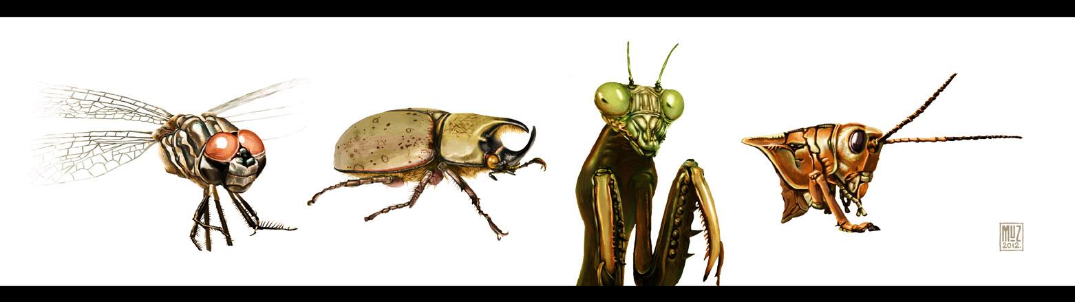 Insect Study by muzski