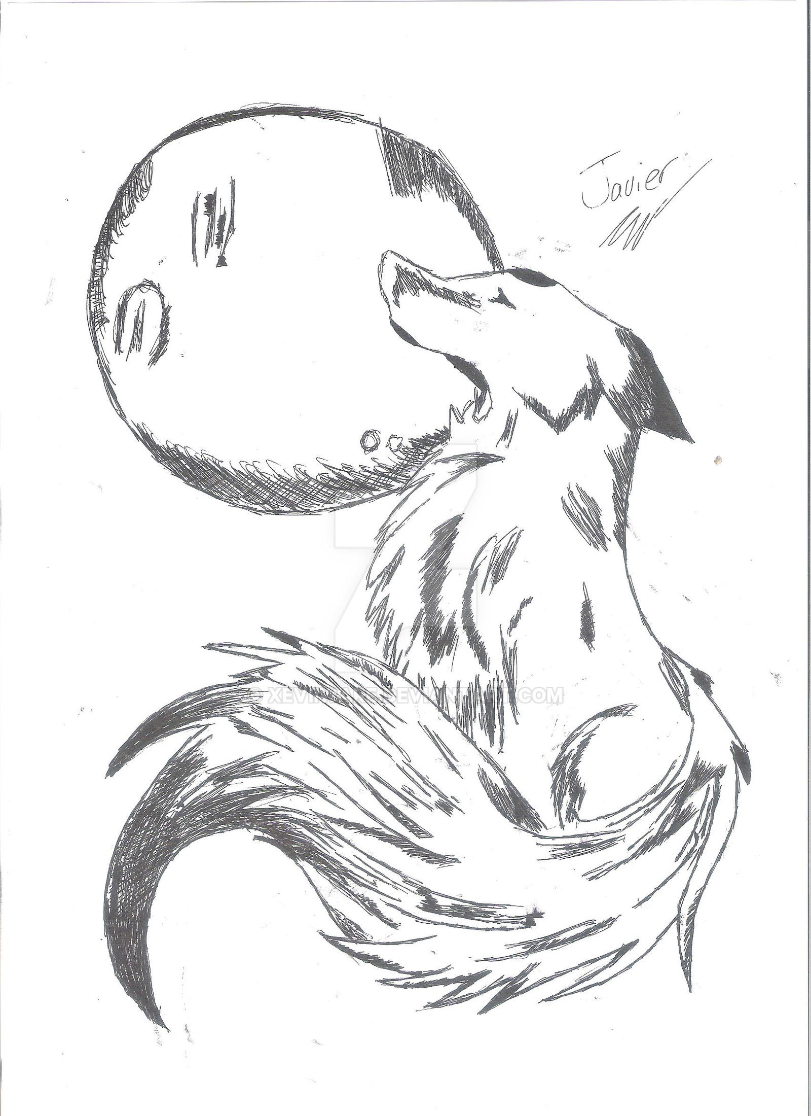 lobo con escala de grises by xeviiware