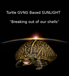 Turtle GVNG BASED Sunlight