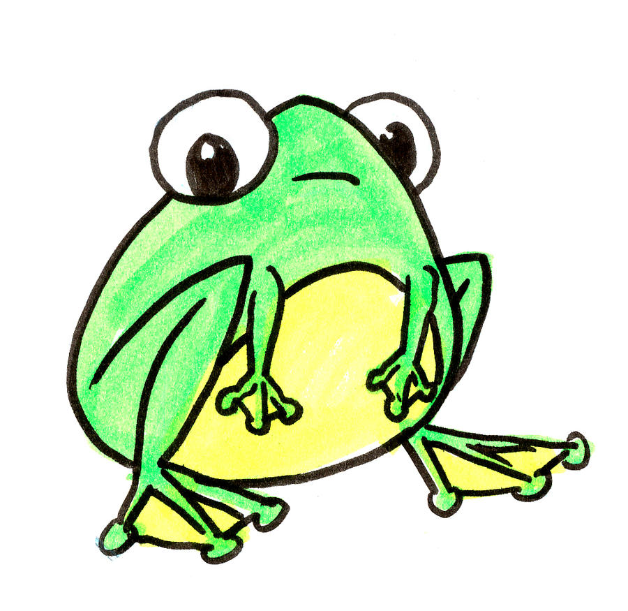Frog design for Frog consulting