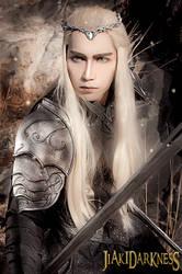 Thranduil The hobbit 3 cosplay by Jiakidarkness