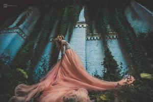 dress by DanHecho