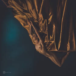 golden flight by DanHecho