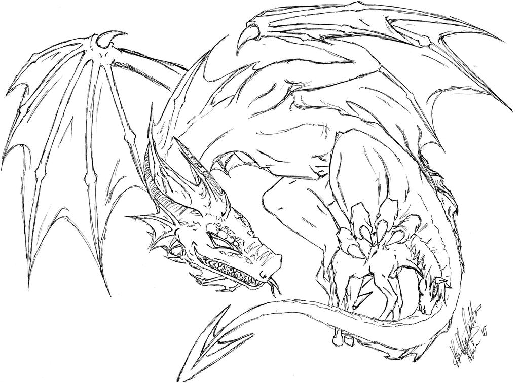 Line Drawing Dragon : Dragon line sketch by a ucards nge on deviantart