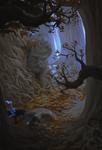 Strange Adventure : The philosopher's glade