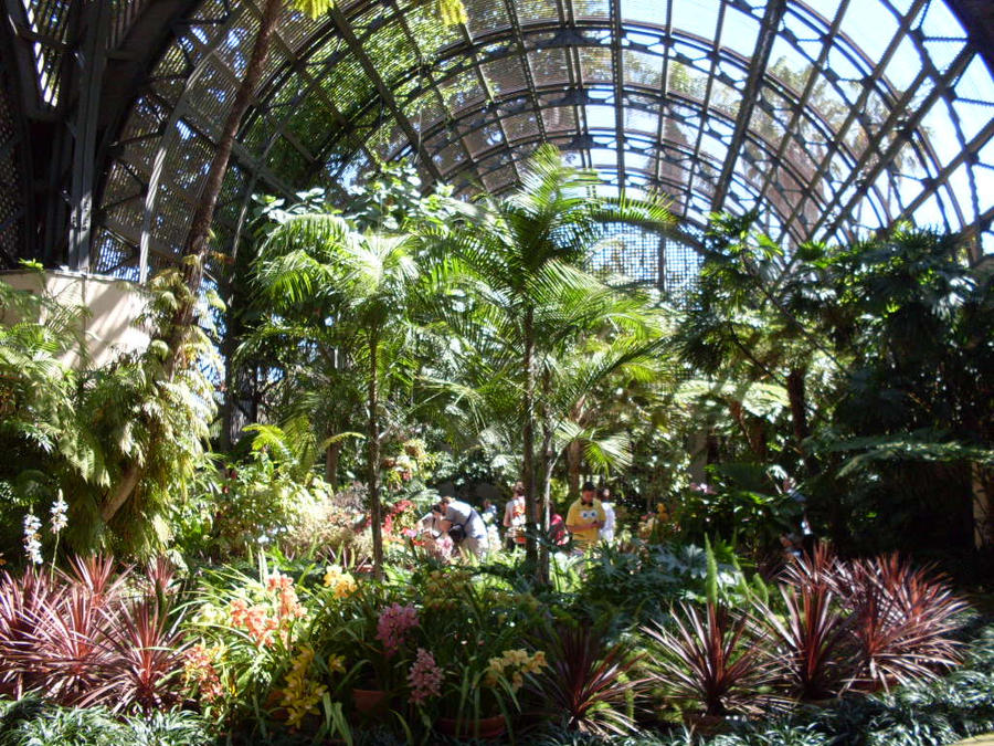 Botanical Garden Balboa Park By Ziegfeldfollies On Deviantart