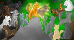 WarriorCats by Color-Cat