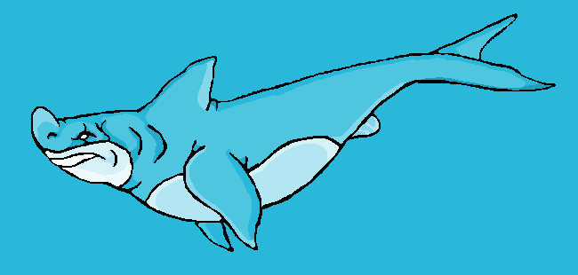 Shark by jamiemiller