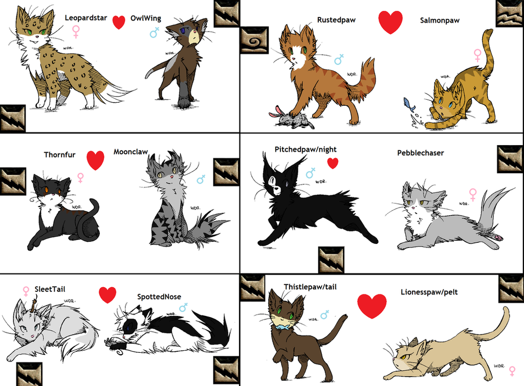 Images Of Warriors Omen Of The Stars Main Cats
