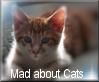 Mad about cats Stampie by AnnaKirsten
