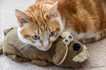 My little man and his favourite toy by AnnaKirsten