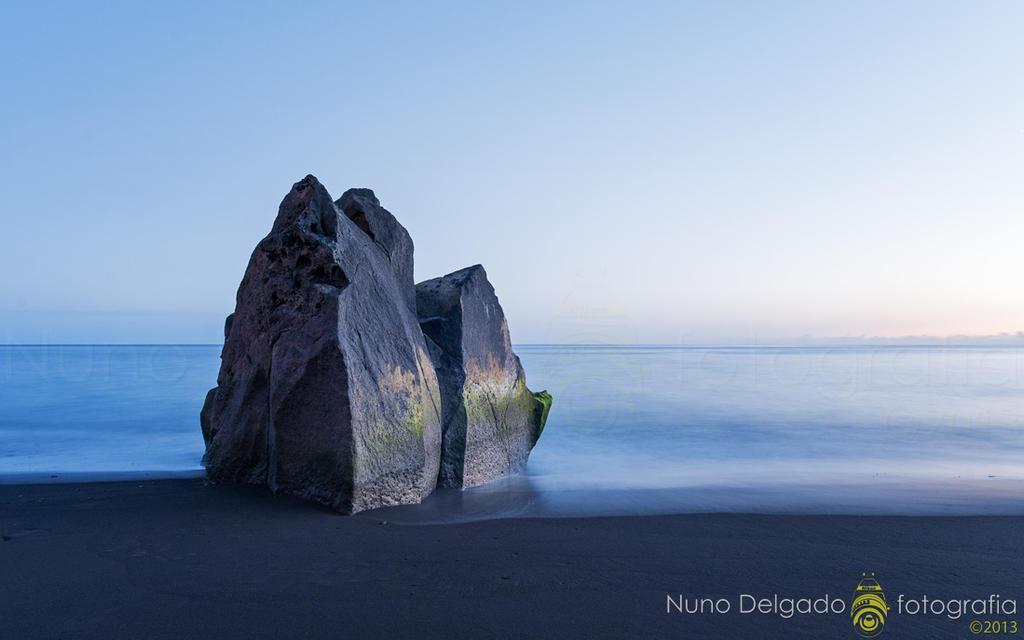 solitude by nmdelgado