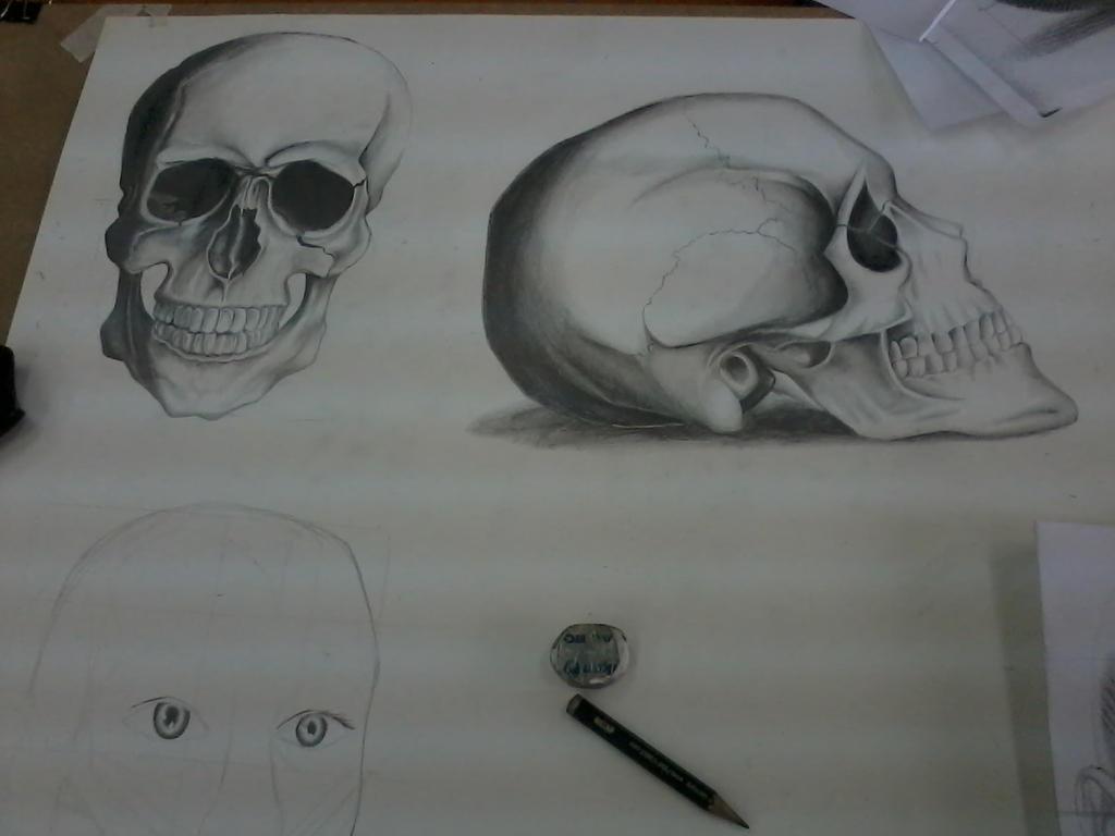 Skull... by SpongePersa