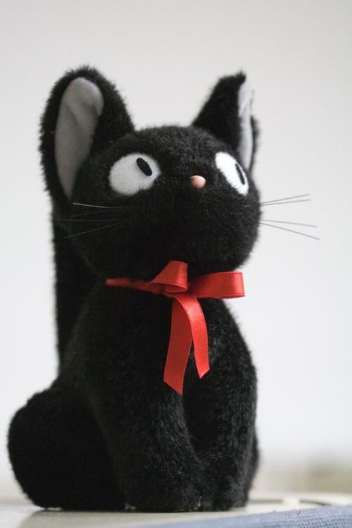 Mr.Kitty - Life