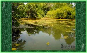 Quiet Pond by Taures-15