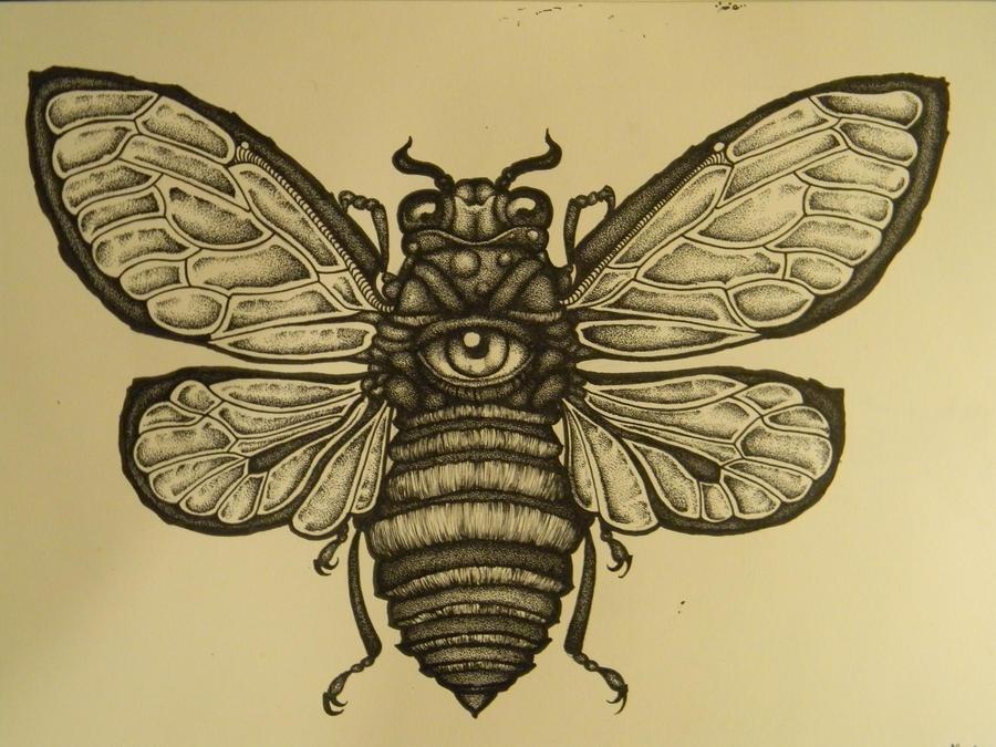cicada outline and stippling by the serpents egg on deviantart. Black Bedroom Furniture Sets. Home Design Ideas