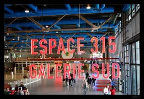 espace 315