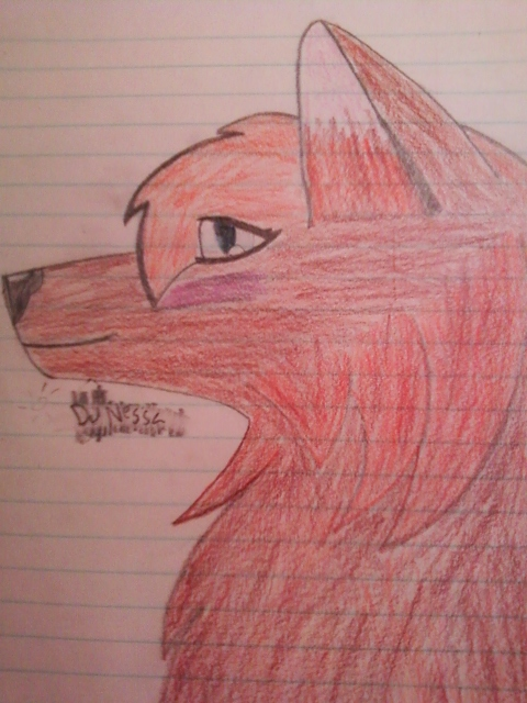 Colored wolf by DjNessa
