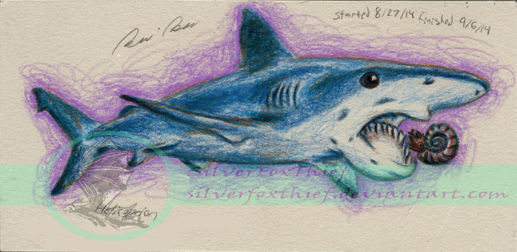 Helicoprion - A Squid's Worst Nitemare by SilverFoxThief ...