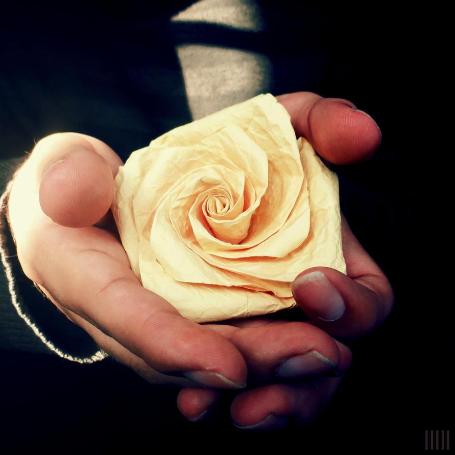 paper rose by jcmphotos