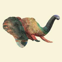 Elefante by PFunkus