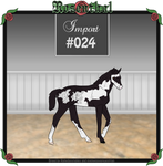 Rosenthal Import #024 by EvenweaveEquestrian