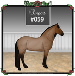 Rosenthal Import #059 by EvenweaveEquestrian
