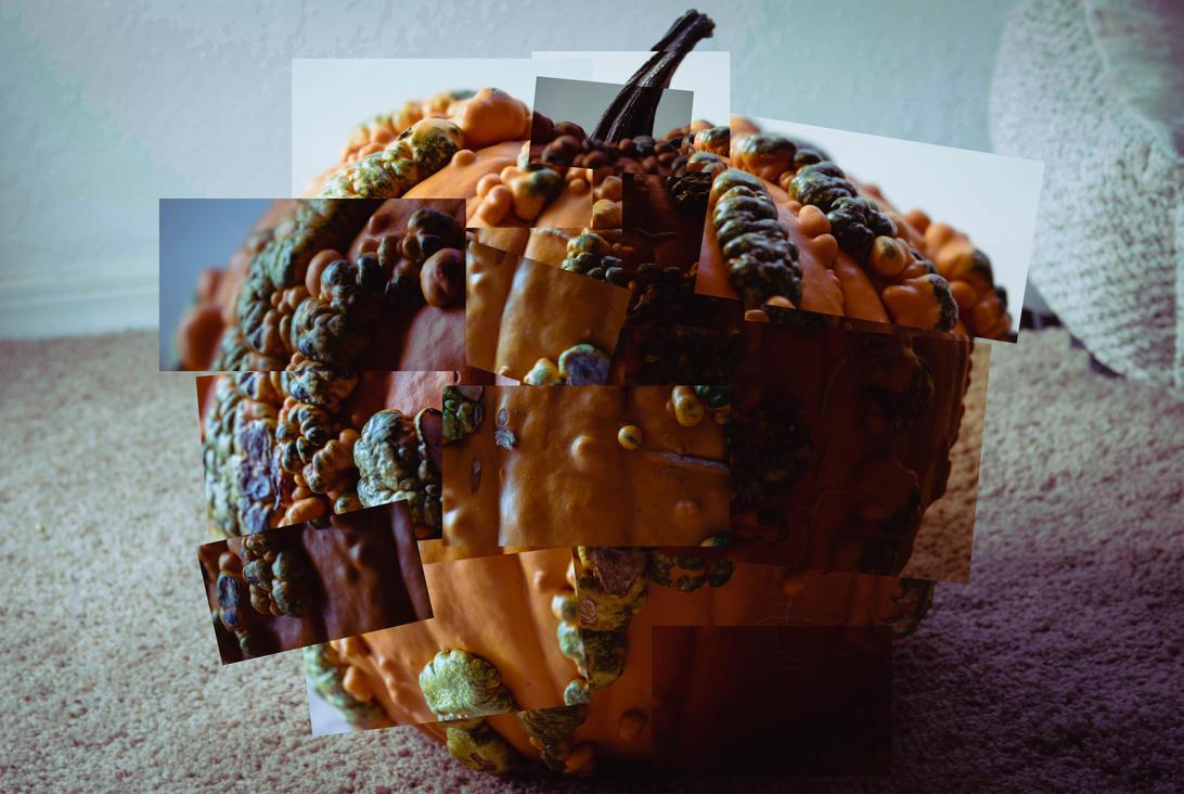 Hockney Pumpkin by Shastro